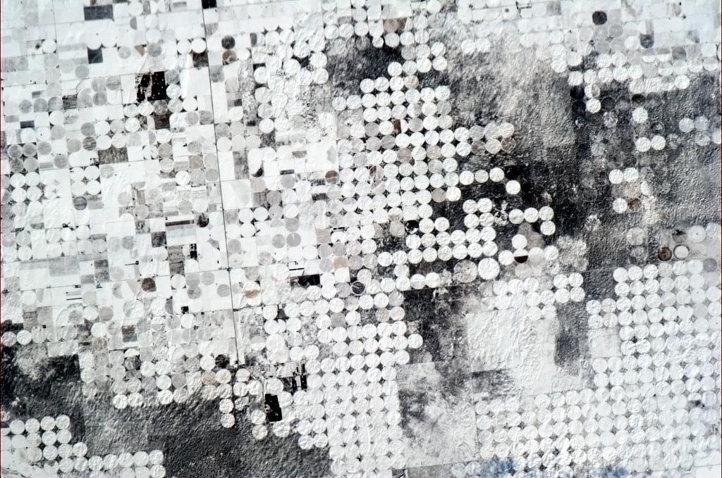 Những cánh đồng ở Tây Nam nước Mỹ nhìn như những bông hoa giấy.