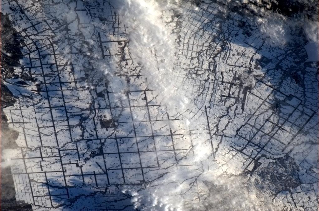 Đồng lúa ở Nhật phủ trong tuyết dày đặc.
