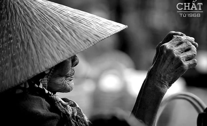 Ảnh: Nón lá Việt Nam (Nguyễn Văn Bảo)