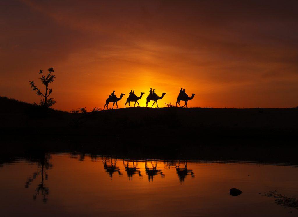 Pushkar, Ấn Độ. Ảnh: Ali Al-Zaidi