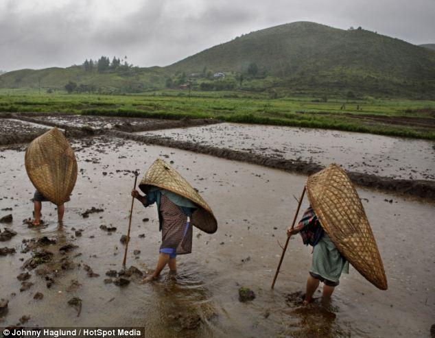 Mưa quanh năm ngày tháng nên đương nhiên là không có chuyện mưa thì nghỉ làm hay đi vào đâu trú tạm.