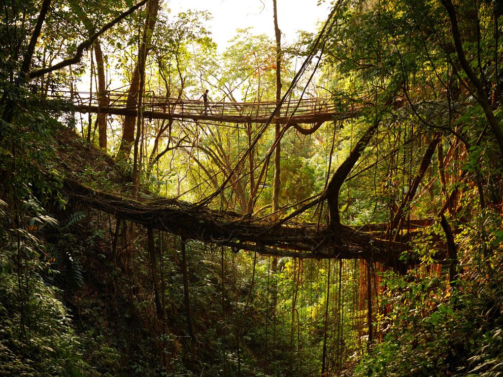 Một cây cầu mới đang được xây dựng để thay thế cái đã cũ.