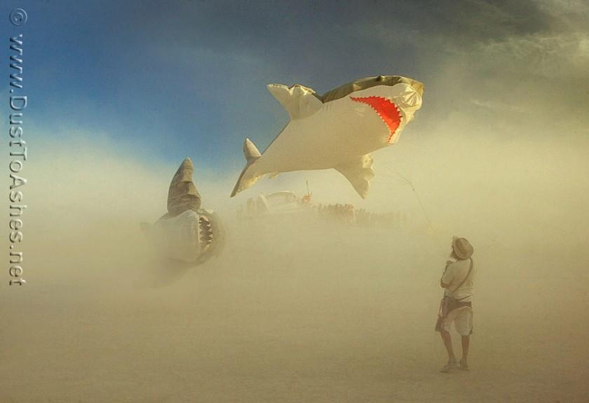 Burning-Man-2011-fishing-flying-sharks-in-dust-storm-840x576