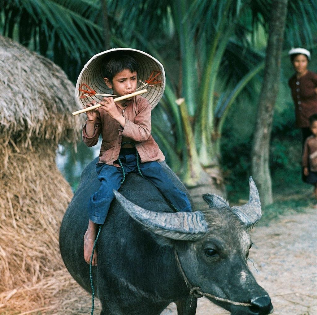 Miền Bắc Việt Nam 1969.