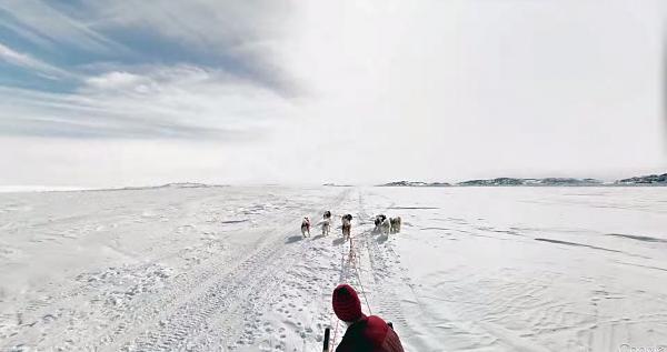 Thậm chí là Google Street View còn được dùng trên xe kéo của chó!