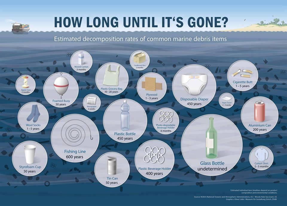 Năm 2600, nhựa và rác thải công nghiệp đã hoàn toàn tự tiêu hủy khỏi môi trường sinh thái trên Trái Đất.