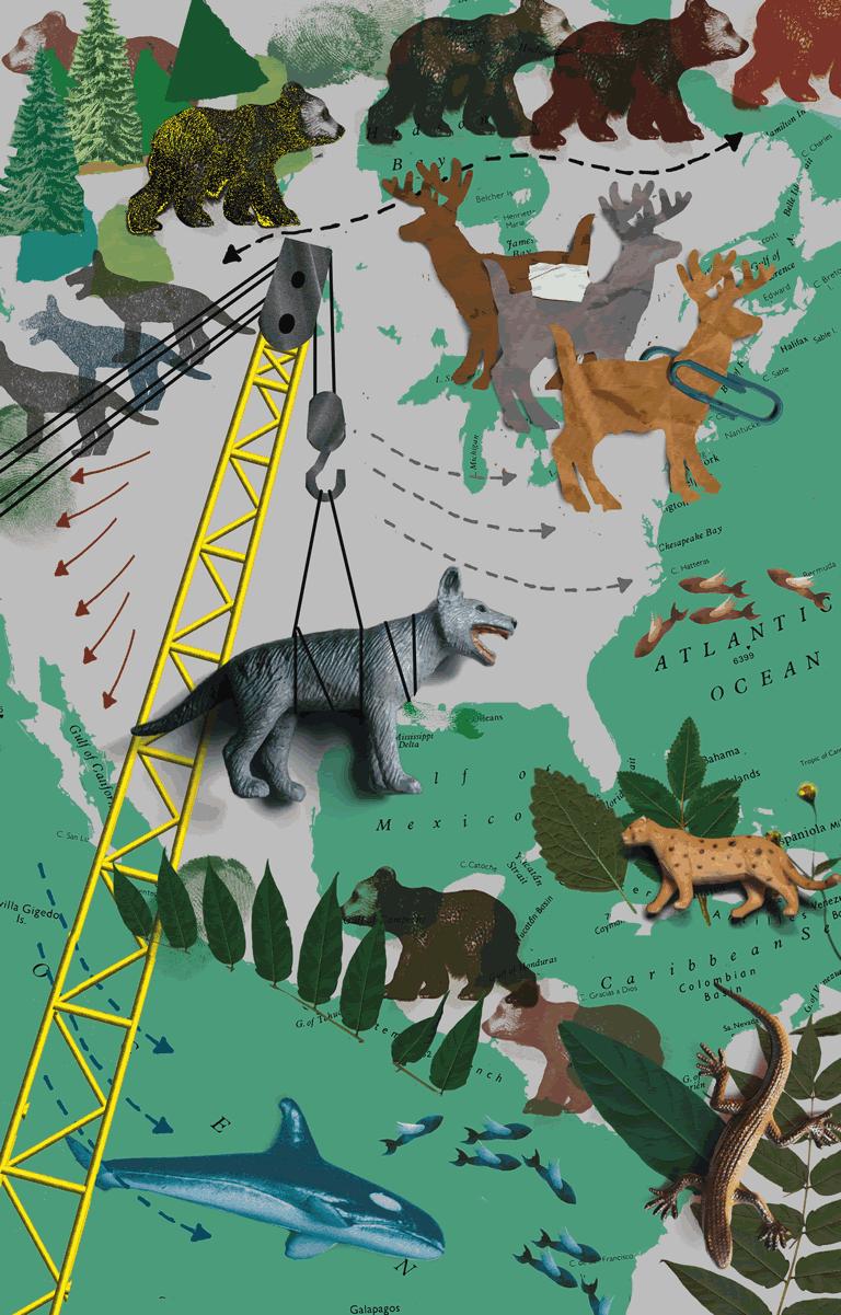 2210. Nỗ lực khôi phục lại hệ sinh thái tự nhiên trên Trái Đất đang được bắt đầu. Những hoạt động phá hoại của con người trong khoảng thời gian từ thế kỷ 19 cho đến cuối thế kỷ 22 đã làm tổn hại nặng nề môi trường sống trên Trái Đất, trong đó khiến một nửa số loài động thực vật trên hành tinh của chúng ta ( tức là khoảng 15 triệu loài) bị tuyệt chủng. Rừng mưa nhiệt đới lớn nhất thế giới Amazon, đã biến thành sa mạc từ 100 năm trước, băng tan ở cực khiến mực nước biển dâng cao gần hai mét so với cuối thế kỷ 20. Trái Đất biến đổi đến mức những thế hệ con người sinh sau sẽ không thể nhận ra nổi Trái Đất khi xem những bức ảnh phong cảnh và hoang dã hồi thế kỷ 20, mà phần lớn chỉ được tiếp xúc với những môi trường tự nhiên nhân tạo do con người tạo ra. Dẫu vậy, khi bước sang thế kỷ 23, công nghệ đã phát triển đến mức chúng ta có thể xây dựng những cơ sở hạ tầng trên khí quyển giúp kiểm soát khí hậu Trái Đất như mong muốn, với nỗ lực hồi phục lại những gì đã mất. Đây là một dự án khổng lồ sẽ kéo dài nhiều thập kỷ với việc nghiên cứu DNA và phục hồi lại những loài động thực vật đã tuyệt chủng và trả chúng về nơi sinh sống ban đầu trước khi có con người, khôi phục lại trạng thái địa chất ban đầu của Trái Đất, đưa các sa mạc và vùng đất chết trở về nguyên hiện trạng, đảo ngược quá trình oxit hóa của biển, sông hồ được khử độc để các loài sinh vật sống dưới nước có thể phát triển. Thu hẹp phạm vi ảnh hưởng của con người bằng cách xây dựng lên trên cao hơn nữa chứ không mở rộng diện tích.